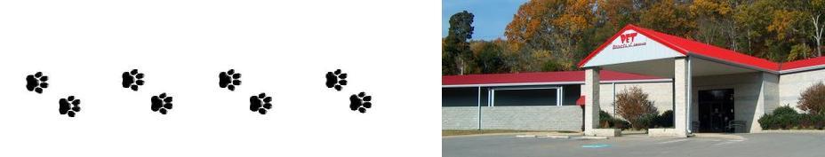 %%Dog Daycare Nashville%%